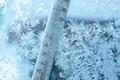Бетон или мороз - кто одержит победу?
